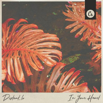 In Your Heart   Chillhop.com